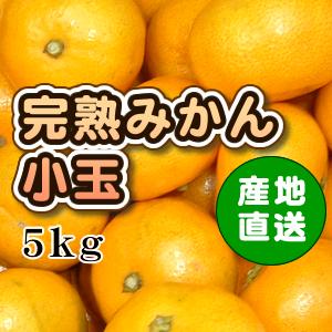 完熟みかん小玉_値段なし(小)