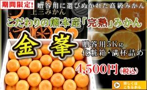 kinpou_gift2014_01